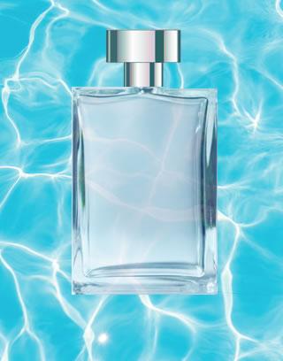 perfumes acquaticos para presente
