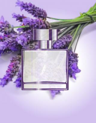 perfumes aromáticos para presente com entrega
