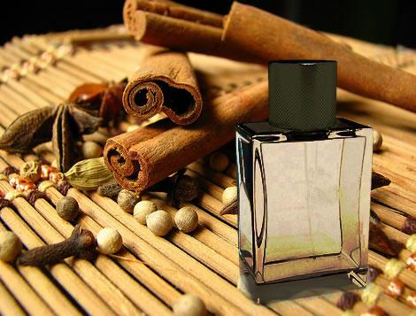 perfume aroma oriental presente homem